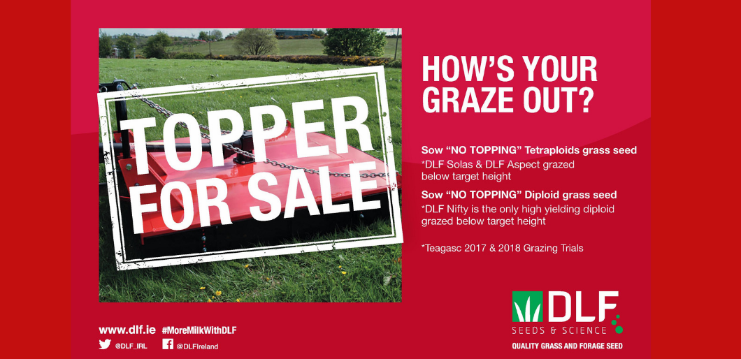 HOW'S YOUR GRAZE OUT?